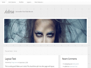 Wordpress theme Adroa