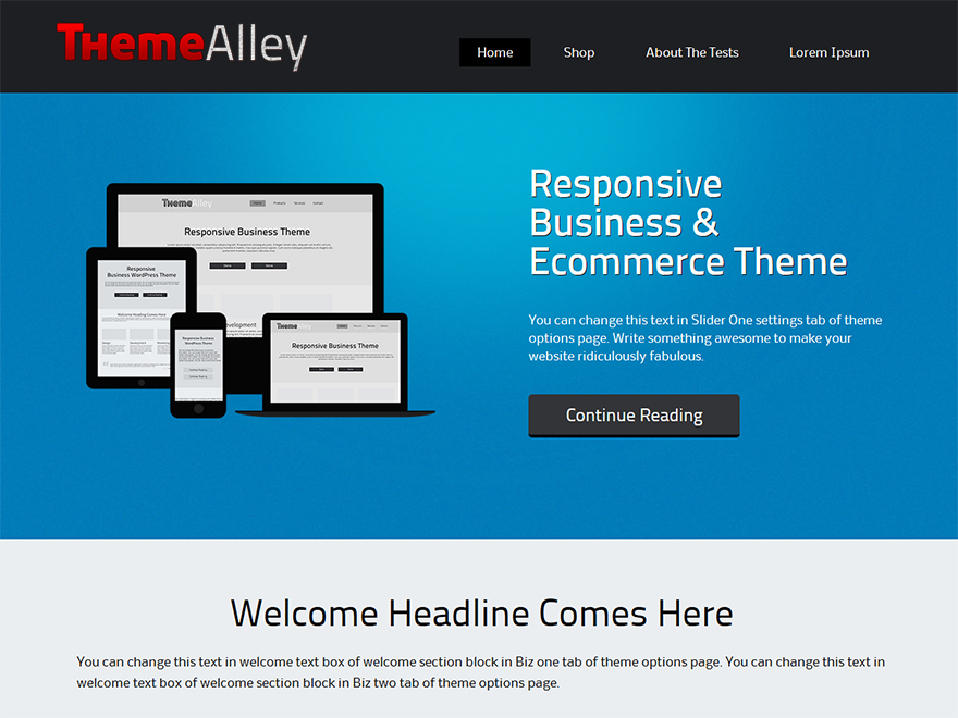 Wordpress theme Alexandria