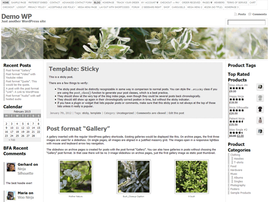 Wordpress theme Atahualpa