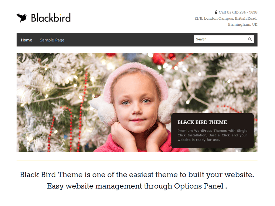 Wordpress theme BlackBird
