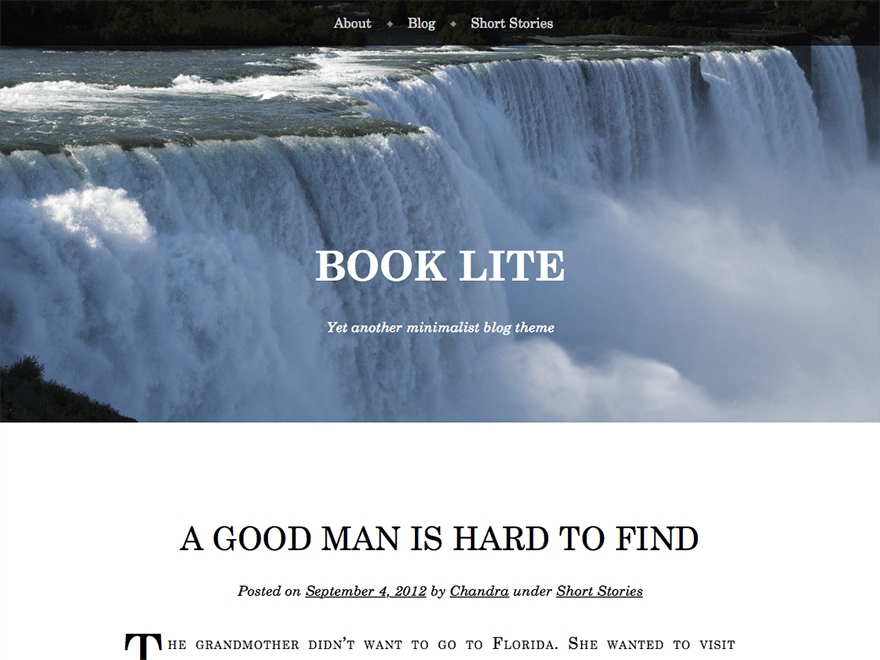 Wordpress theme Book Lite