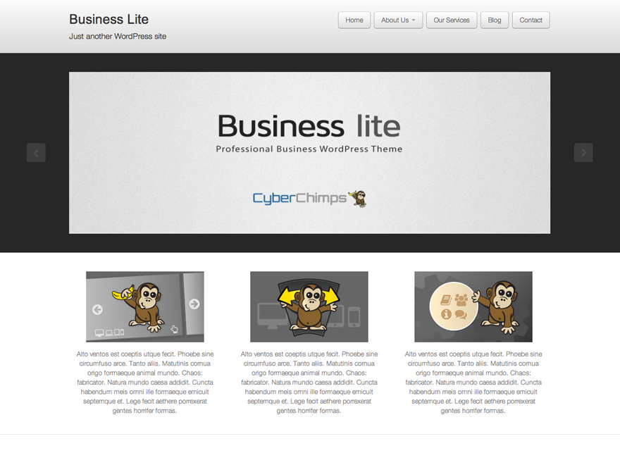Wordpress theme Business lite