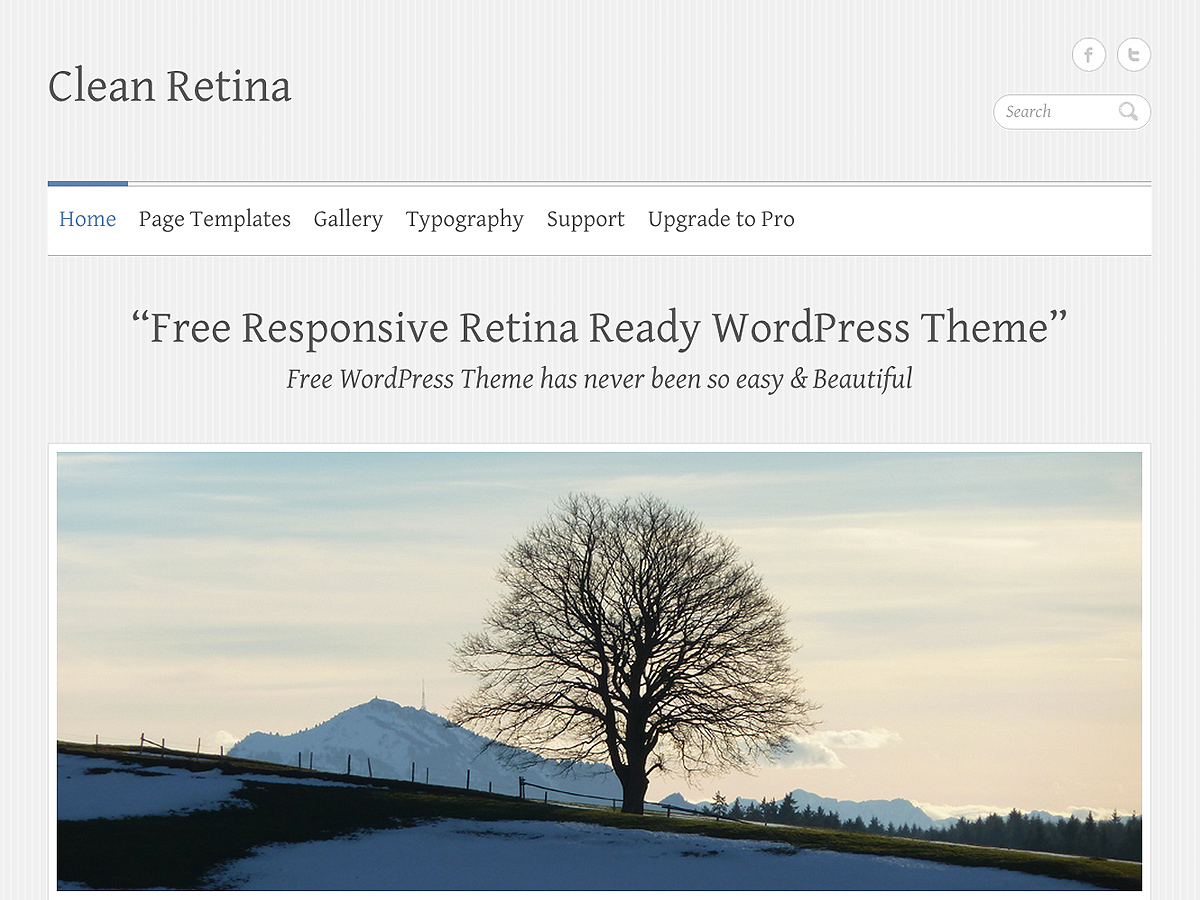 Wordpress theme Clean Retina