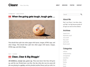 Wordpress theme Cleanr
