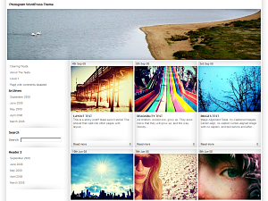 Wordpress theme Fotogram