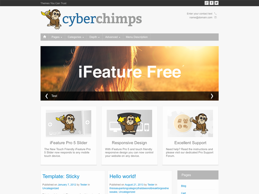 Wordpress theme iFeature