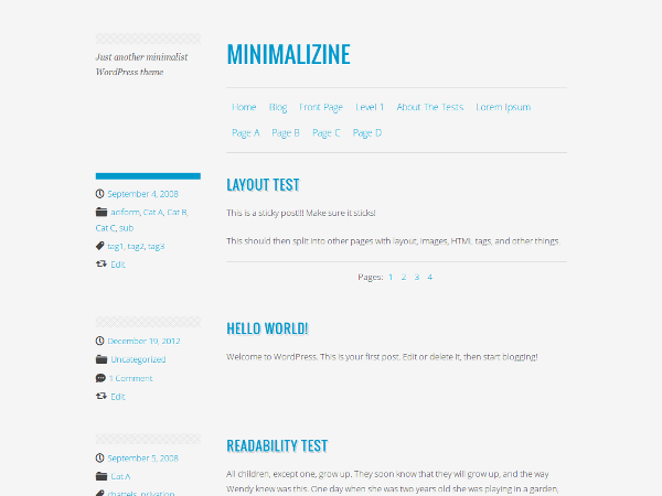 Wordpress theme Minimalizine