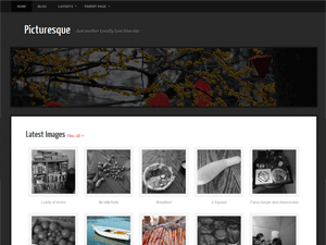 Wordpress theme Picturesque