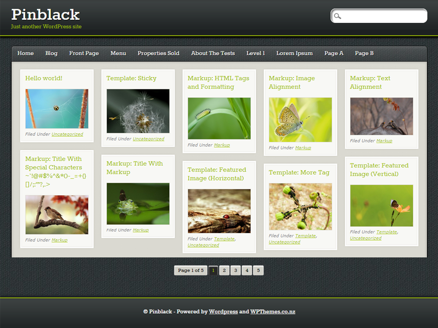 Wordpress theme PinBlack