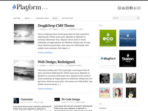 Wordpress theme Platform