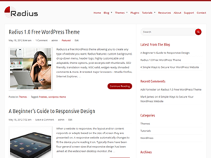 Wordpress theme Radius