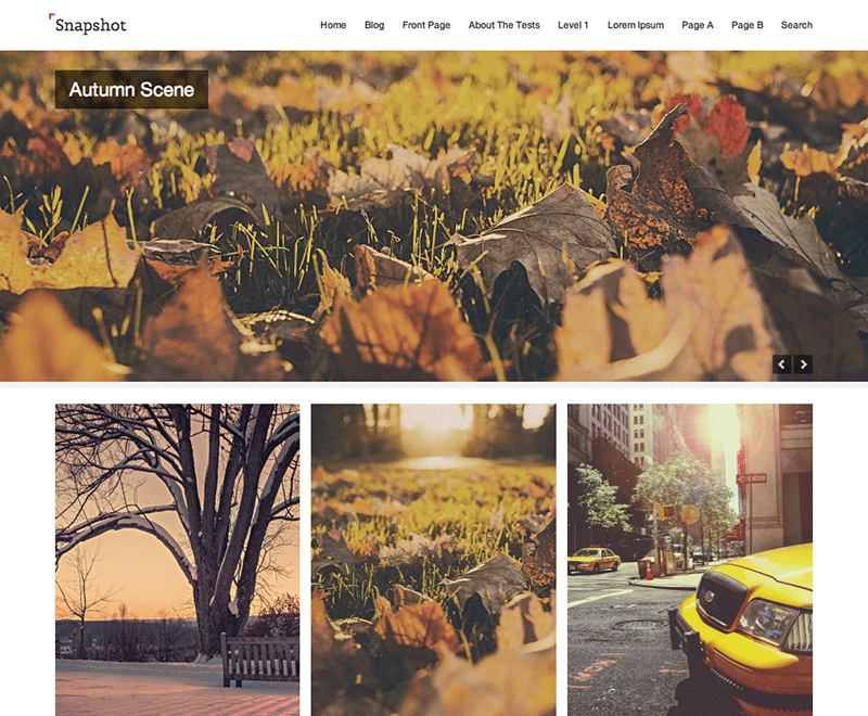 Wordpress theme Snapshot
