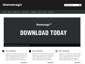 Wordpress theme thememagic