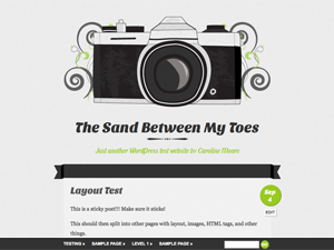 Wordpress theme Vintage Camera
