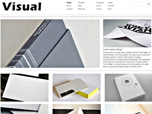 Wordpress theme Visual Theme