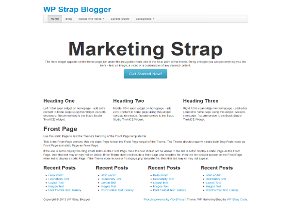 Wordpress theme WP MarketingStrap