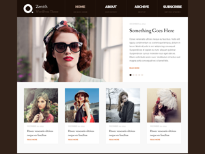 Wordpress theme Zenith