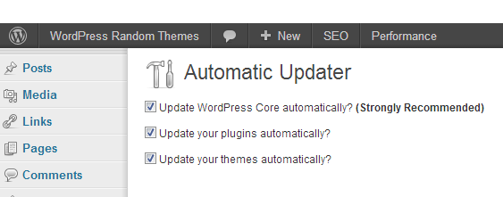 Automatic Updater ‹ WordPress Random Themes — WordPress