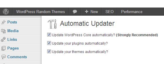 Automatic Updater ‹ WordPress Random Themes — WordPress